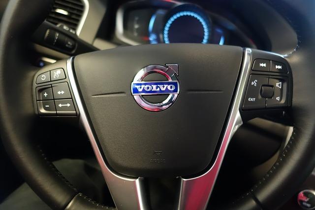 kierowca-przewoznik